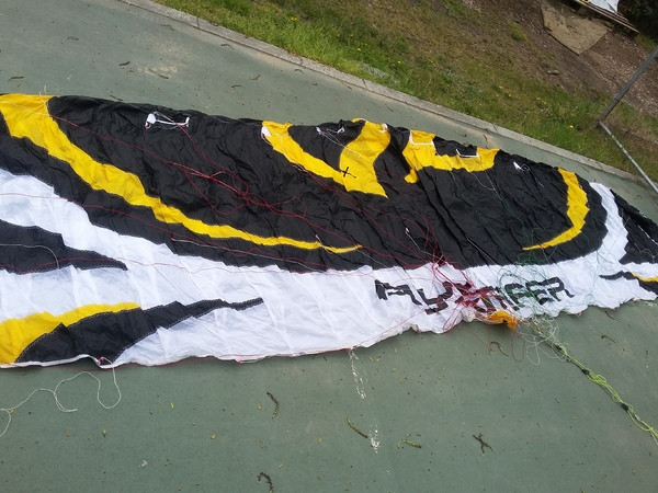 Flysurfer - Speed 4 dlx