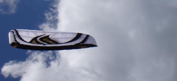 Flysurfer - Speed 4